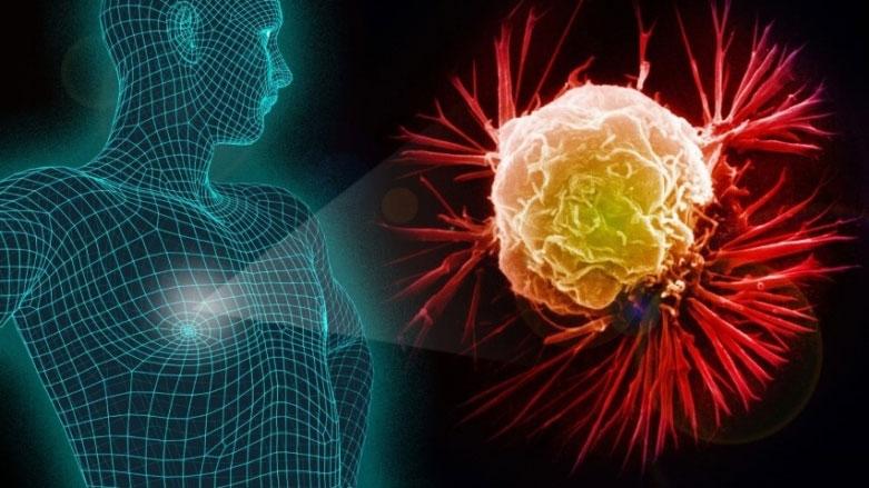تغذیه چه تاثیری بر ریسک ابتلا به سرطان دارد؟