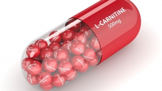 فواید ال-کارنیتین را بشناسید
