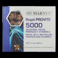 رویال پروویت 5000 مارنیز